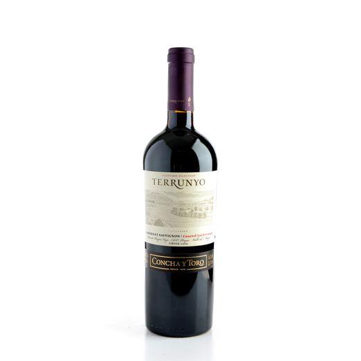 -296088-1-vinho-terrunyo_cabernet_sauvignon_2009-