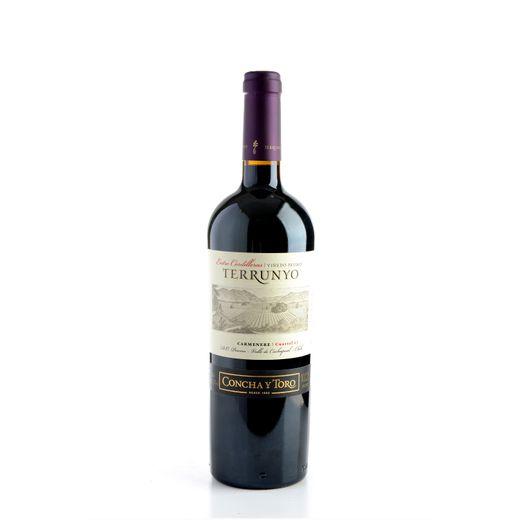 Vinho-Terrunyo-Carmenere-750ml-1